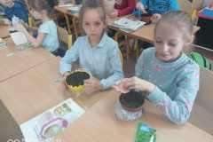 Ziołowy ogórdek w klasie I